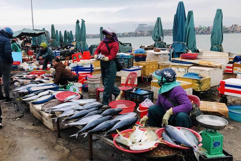Chợ Đồng Hới là điểm tập trung hải sản lớn nhất tỉnh