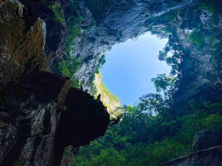 Khu rừng nhiệt đới với hệ sinh thái đa dạng phát triển mạnh mẽ ngay bên trong Hố sụt Kong