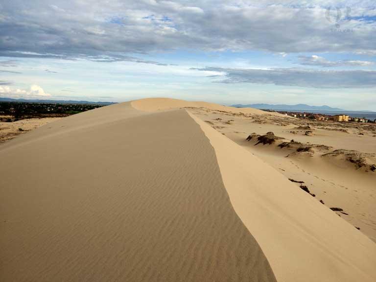 Đồi cát trải dài xung quanh hồ Bàu Tró