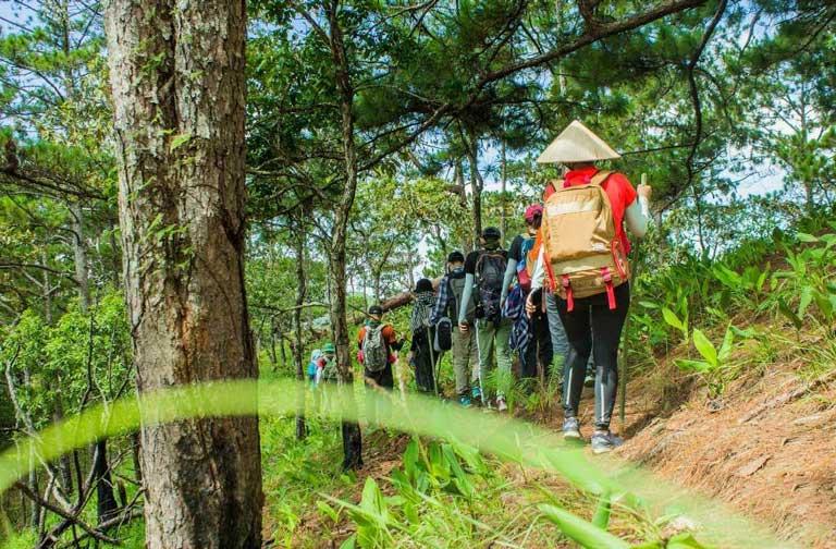 Hoạt động hiking leo núi