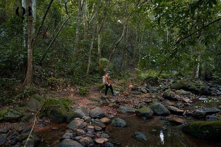 Tour du lịch sinh thái Vườn Thực Vật rất hấp dẫn du khách yêu thiên nhiên