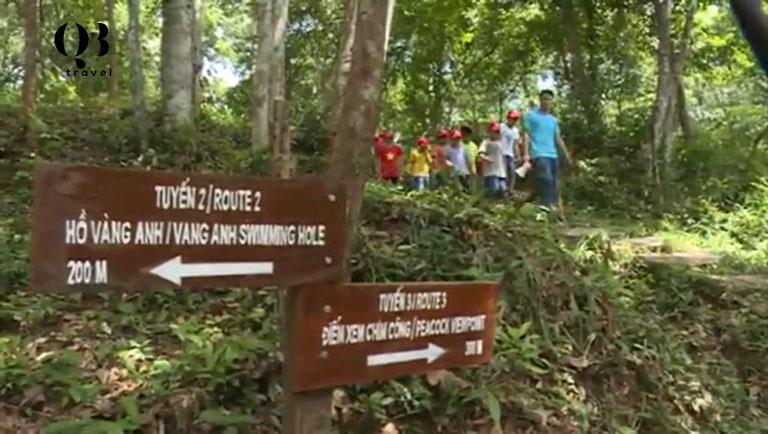 3 lộ trình đưa du khách khám phá Vườn thực vật Phong Nha Kẻ Bàng