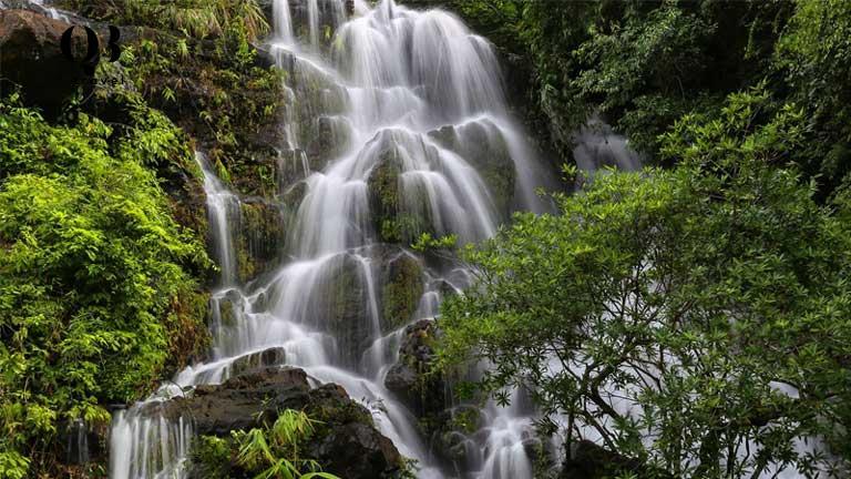 Cận cảnh vẻ đẹp của thác Gió ở vườn thực vật Phong Nha