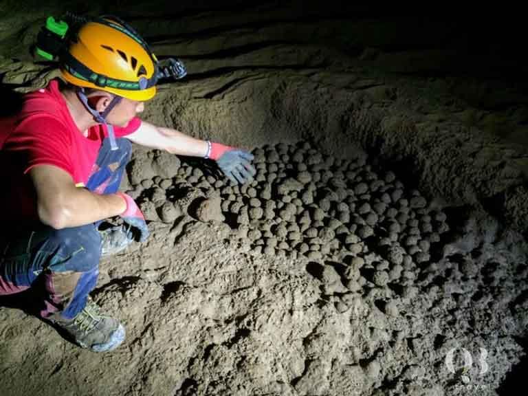 Động Phong Nha - Kẻ Bàng là một di chỉ khảo cổ có giá trị to lớn
