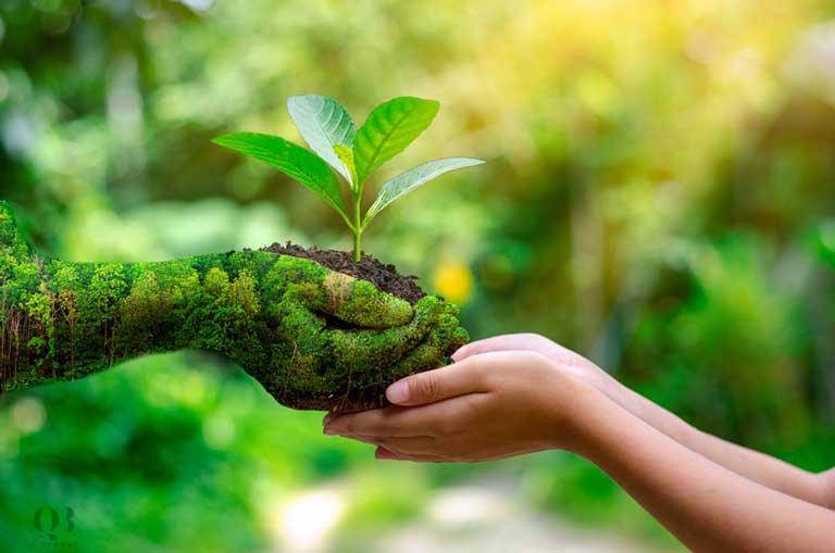 Mọi người cùng có trách nhiệm bảo vệ và gìn giữ môi trường