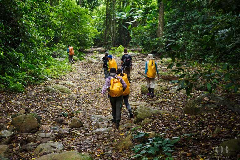 Đoàn trekking trong Vườn Quốc gia Phong Nha - Kẻ Bàng