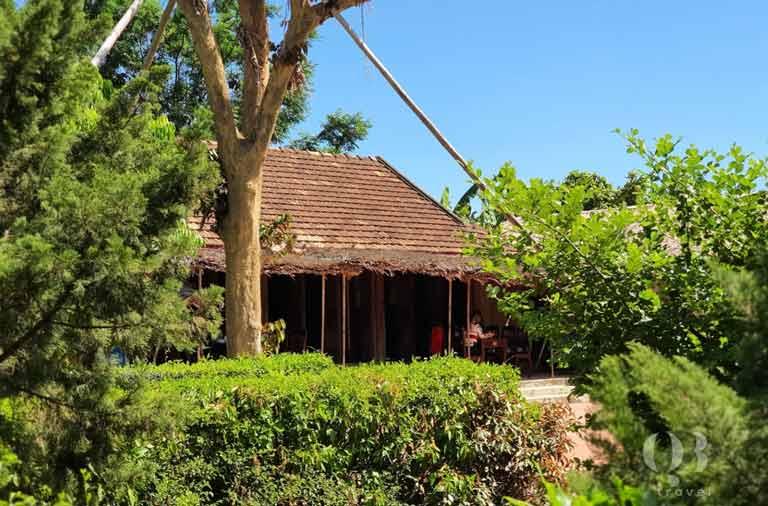 Căn nhà Đại tướng bao quanh giữa những cây xanh bạt ngàn