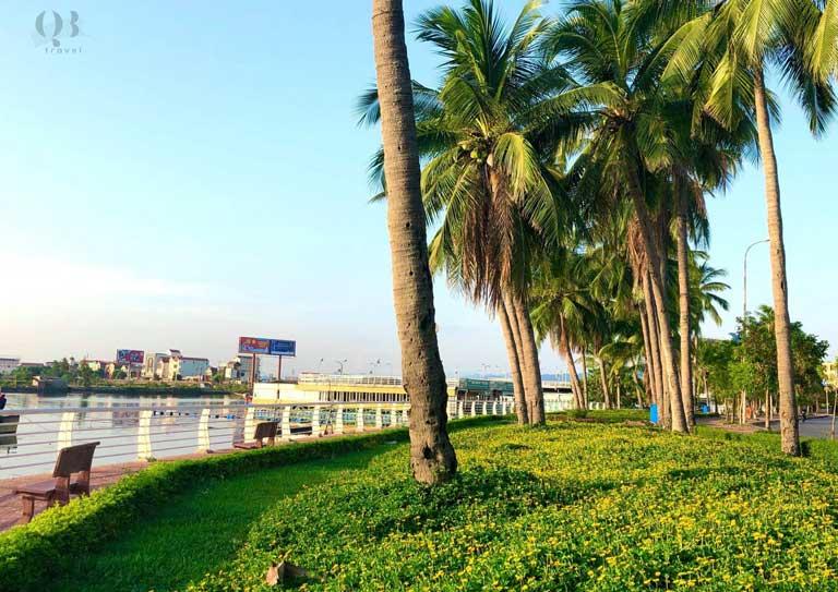 Những cây dừa trong công viên Đồng Hới, Quảng Bình tỏa bóng mát